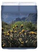 Sonoran Desert Cholla  Duvet Cover