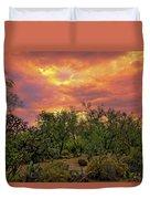 Sonoran Desert Sunset H44 Duvet Cover