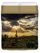 Sonoran Splendor  Duvet Cover