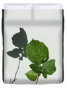 Sophisticated Shadows - Glossy Hazelnut Leaves On White Stucco - Vertical View Upwards Left Duvet Cover