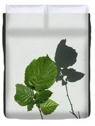 Sophisticated Shadows - Glossy Hazelnut Leaves On White Stucco - Vertical View Upwards Right Duvet Cover