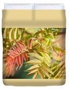 Sorbaria Sorbifolia Spring Foliage Duvet Cover