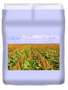 Sorghum Plants Fields In Botswana Duvet Cover