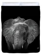 Soul Of The Planet, No. 11 Duvet Cover