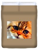 Soulfull Eyes Kitten Portrait Duvet Cover