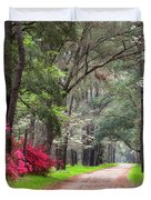 South Carolina Lowcountry Spring Flowers Dirt Road Edisto Island Sc Duvet Cover
