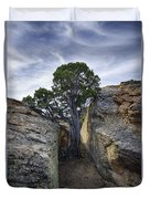 South Of Pryors 2 Duvet Cover by Roger Snyder