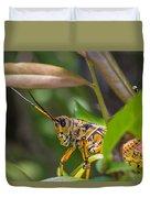 Southeastern Lubber Grasshopper Duvet Cover