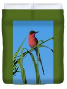 Southern Carmine Bee-eater  Duvet Cover