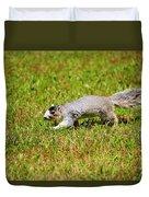 Southern Fox Squirrel Duvet Cover