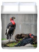 Southern Ground Hornbills Duvet Cover