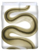 Southern Pacific Rattlesnake, X-ray Duvet Cover