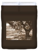 Southern Sunlight On Live Oaks Duvet Cover