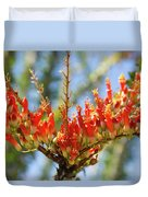 Southwest Ocotillo Bloom Duvet Cover