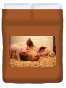 Sow And Piglets Duvet Cover