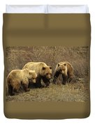 Sow Grizzly With Cubs Duvet Cover