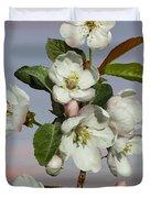 Spade's Apple Blossoms Duvet Cover