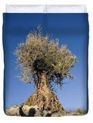 Spain Duvet Cover