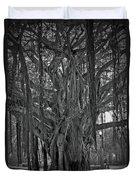 Spanish Moss Of The Tree Duvet Cover