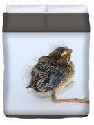 Sparrow Chick Duvet Cover