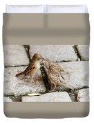 Sparrow Feeding Fledgelings Duvet Cover