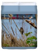 Sparrow On The Cattails Duvet Cover