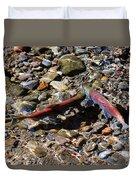 Spawning Salmon - Odell Lake Oregon Duvet Cover