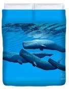 Sperm Whale Family Duvet Cover