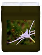 Spider Lilly Flower 2 Duvet Cover