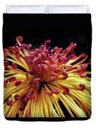 Spider Chrysanthemum Duvet Cover