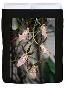 Spider Orchids Duvet Cover