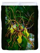 Spindly Orchid Duvet Cover
