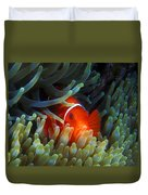 Spinecheek Anemonefish, Great Barrier Reef Duvet Cover