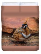 Spinifex Pigeon Duvet Cover