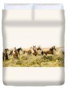 Spirit Of The Horse Duvet Cover by Jason Christopher