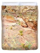 Splash Of Color In Valley Of Fire's Wash 3 Duvet Cover