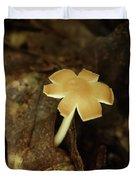 Split Capped Mushroom Duvet Cover