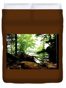 Split Rock State Park Duvet Cover