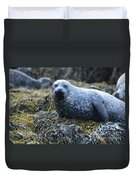 Spotted Coat Of A Harbor Seal Duvet Cover