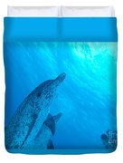 Spotted Dolphins Duvet Cover