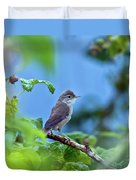 Spotted Flycatcher Muscicapa Striata .  Duvet Cover