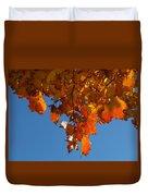Spray Of Autumn Leaves  Duvet Cover