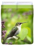 Spring Beauty Hummingbird Square Duvet Cover