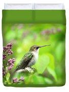 Spring Beauty Ruby Throat Hummingbird Duvet Cover by Christina Rollo