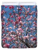 Spring Blossoms Against Blue Sky Duvet Cover