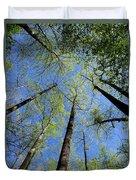 Spring Canopy Skylight Duvet Cover