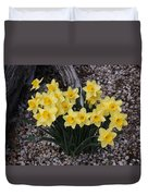 Spring Cheerleaders - Daffodils Duvet Cover