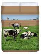 Spring Day With Cows On An Amish Cattle Farm Duvet Cover