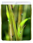 Spring Droplets Duvet Cover