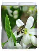Spring Honey Bee Pollinates Orange Citrus Flower Duvet Cover